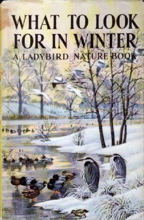 2//6 Original Dustwrapper. THE LADYBIRD BOOK OF BRITISH WILD FLOWERS