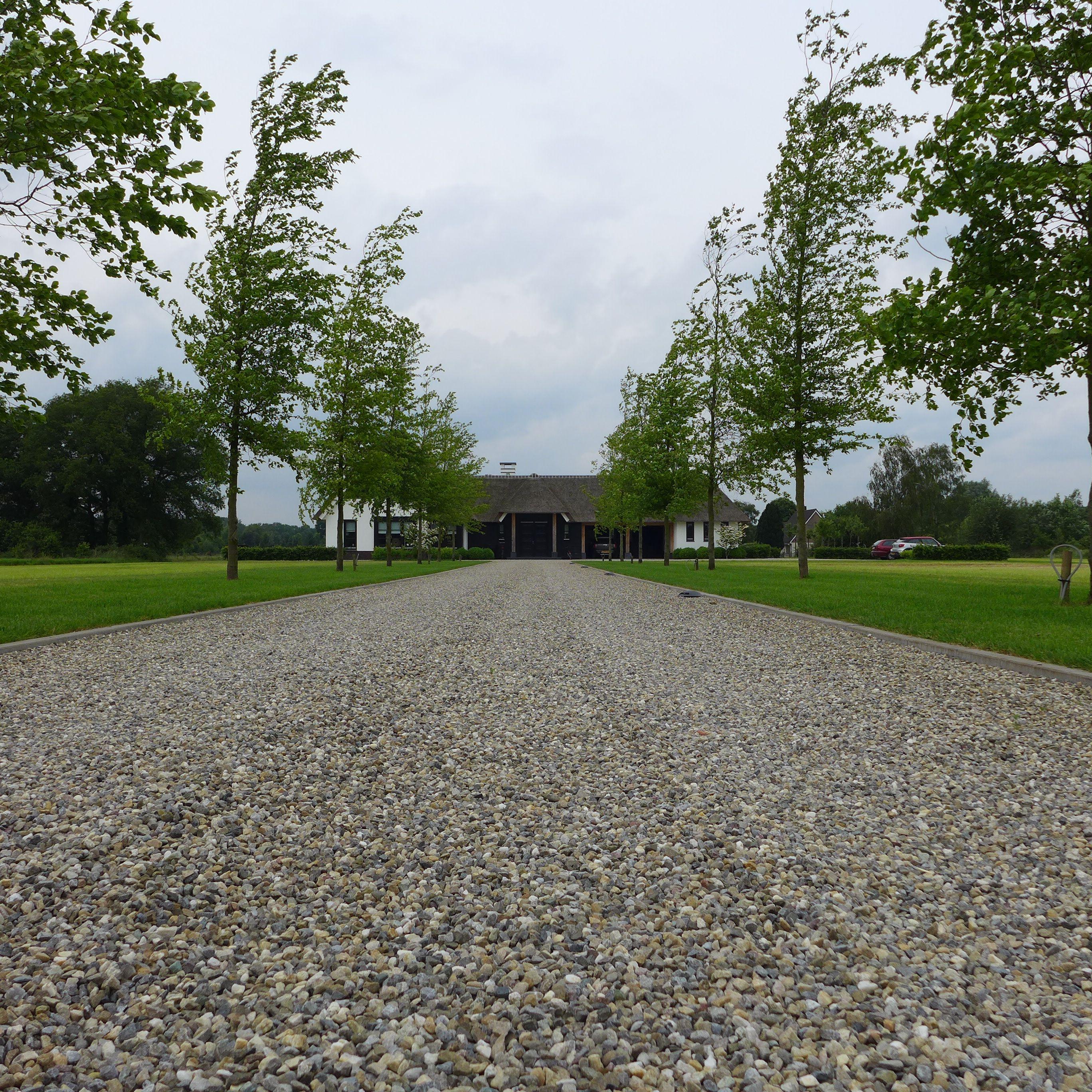 Moderne tuin Oprij laan  www.hendrikshoveniers.nl