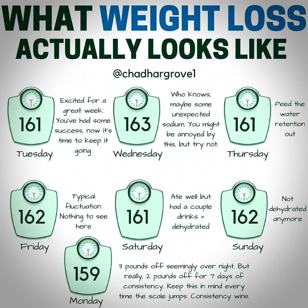 Easy and quick weight loss tips #rapidweightloss | need ...