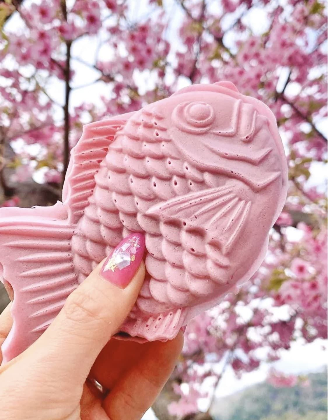 Sakura Taiyaki Cherry Blossom Festival Sakura Food Festival