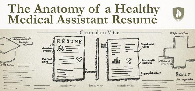 medical assistant resume Healthcare Pinterest Medical - medical assitant resume