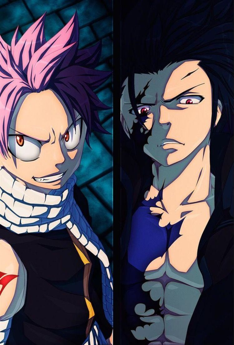 Natsu Dragneel and Gray Fullbuster - Fairy Tail  Gray Fullbuster And Natsu Dragneel