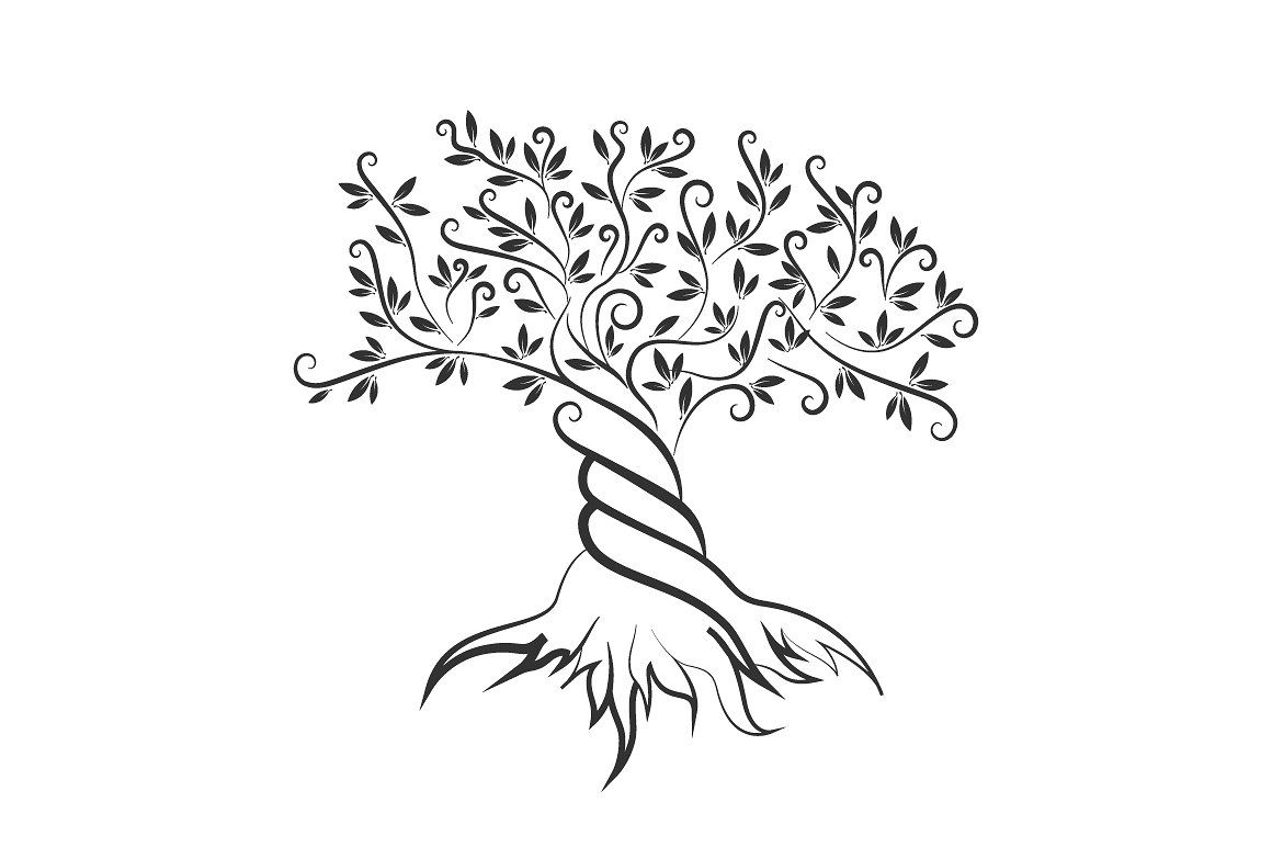 Vector Olive Tree Silhouette Tree Outline Tree Silhouette Tree Drawing