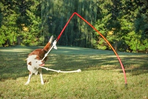 The Tether Tug Dog Toy Product Line Features Great Outdoor Toys