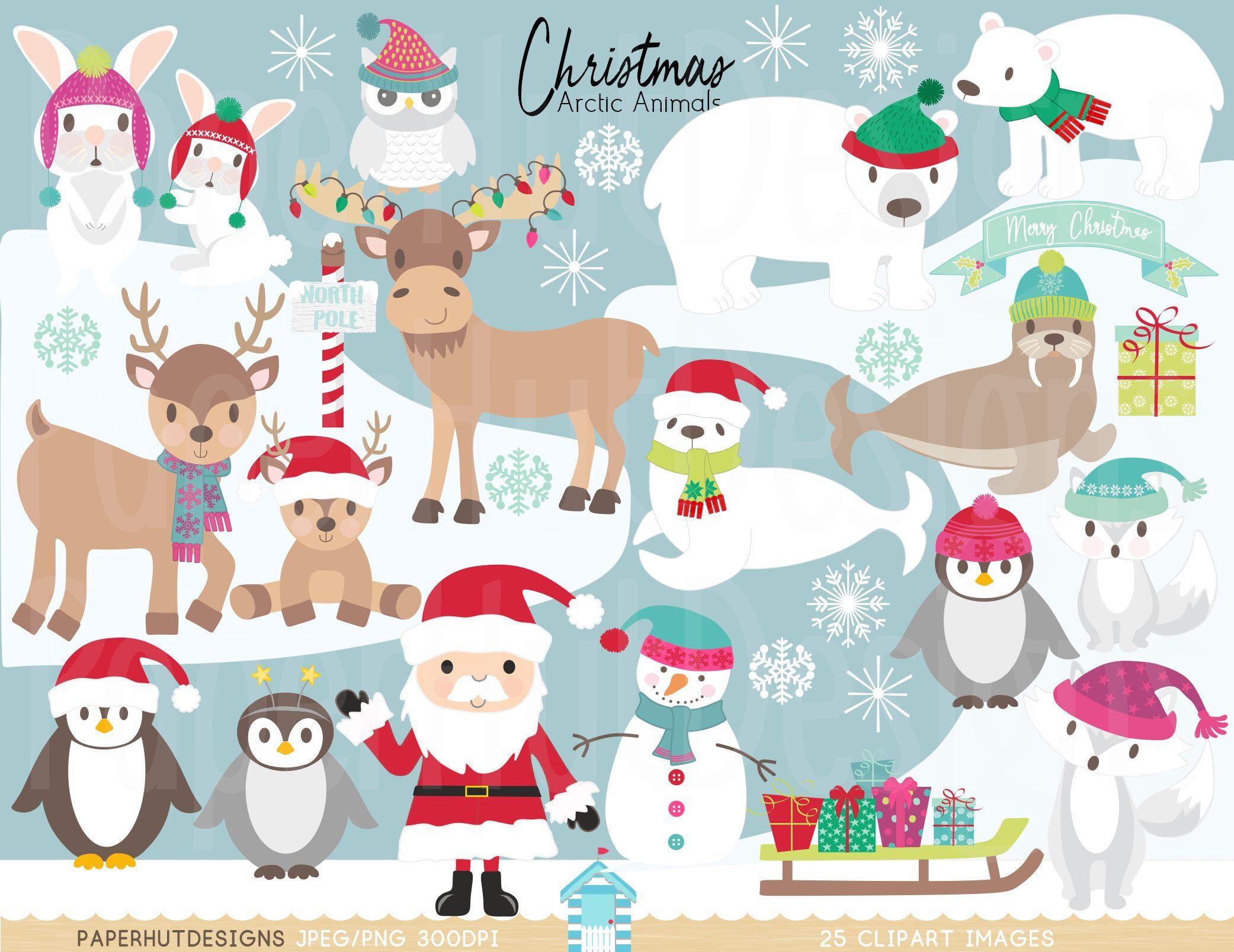 Christmas Arctic Animals Clipart Polar Animals Arctic