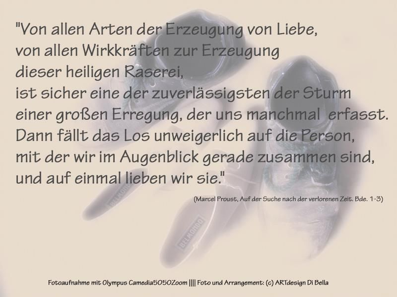 Zitate Von Marcel Proust Aus Auf Der Suche Nach Der Verlorenen Zeit Bde 1 3 Idee Foto Arrangement C Artdesign Di Bella Zitate Marcel Proust Leben