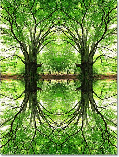 Flip Rotate And Mirror Designs And Patterns In Photoshop Photoshop Mirror Mirror Designs Photo Effects