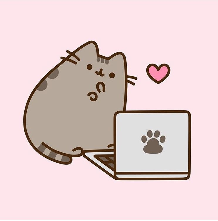 Pusheen On Laptop