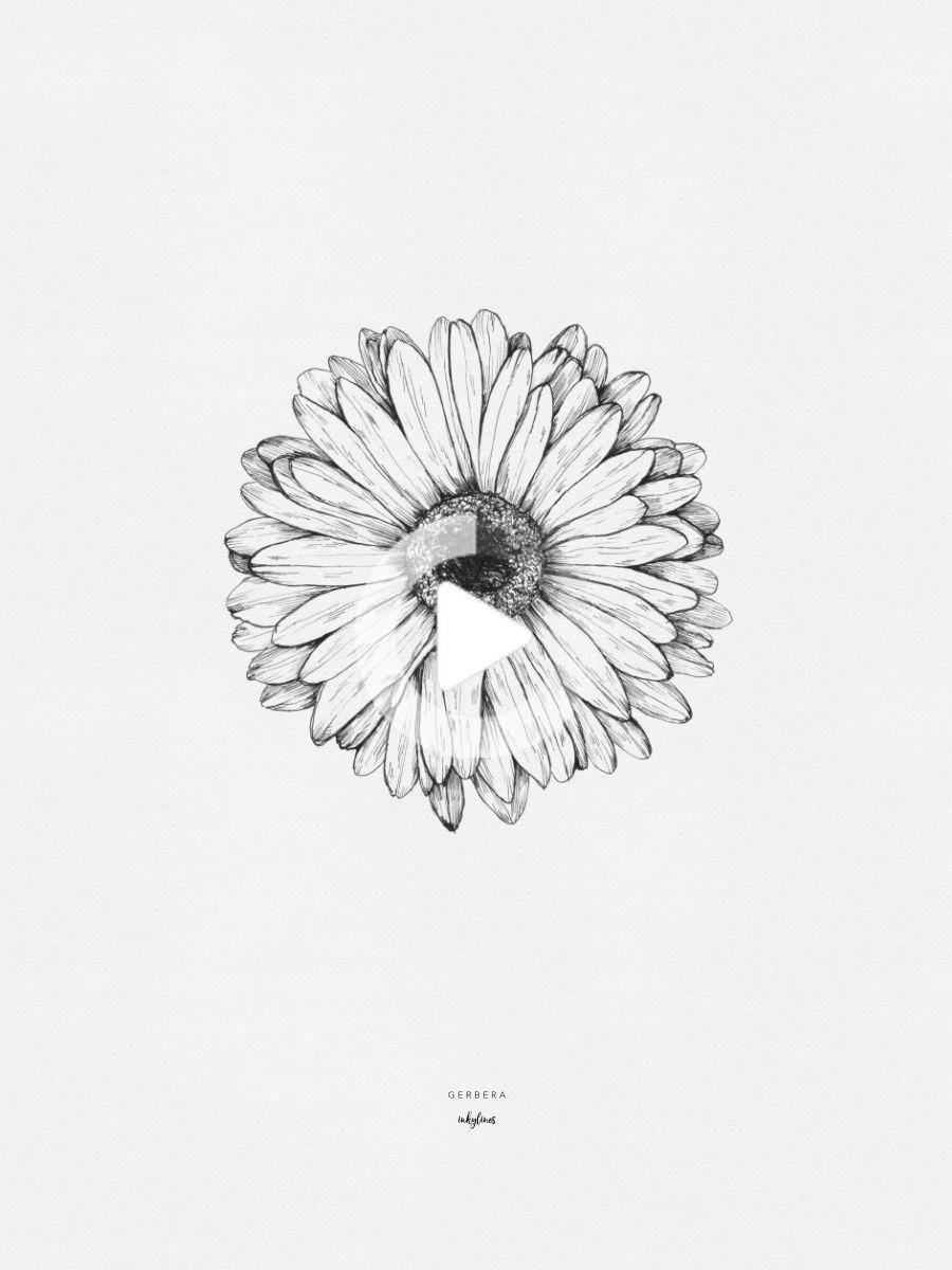 Printables Gerbera In 2020 Sunflower Tattoos Flower Drawing Gerbera