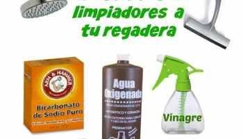 Tips verdes para la limpieza del baño