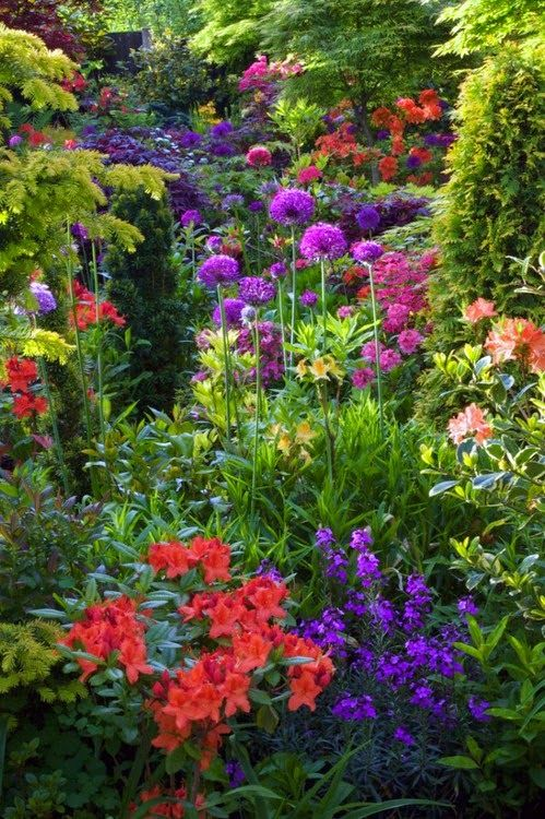 Rich Colors for the Garden Jardines de ensueño Pinterest - jardines de ensueo