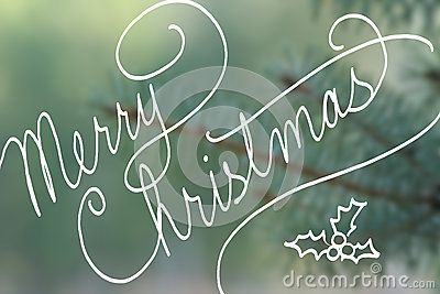 merry christmas typography in hand written cursive handwriting merry christmas text on blurred blue spruce