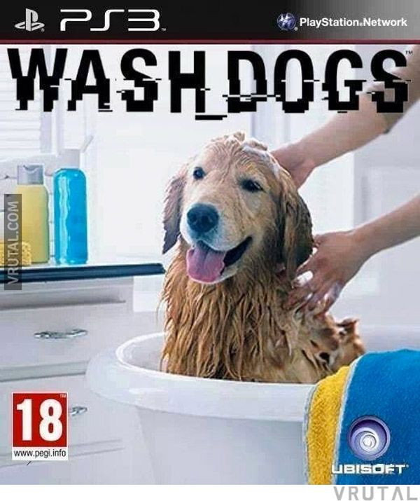 How do you wash a dog?