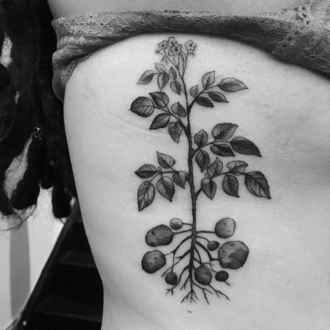 Potato Plant Tattoo Plant Tattoo Roots Tattoo Tattoos