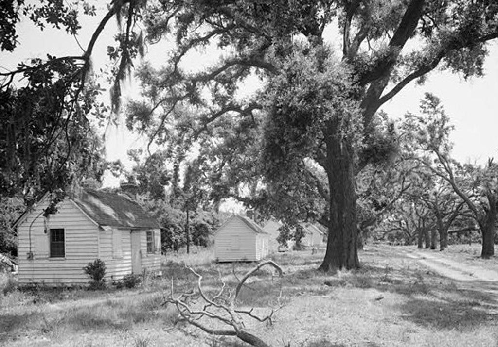 Southern plantations in the 1800s mcleod plantation for 1800s plantation homes