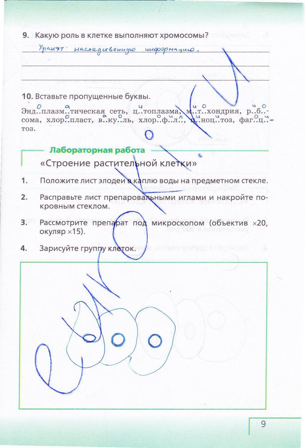 История украины за 7 класс ю.ю.свидерськый ответы гдз