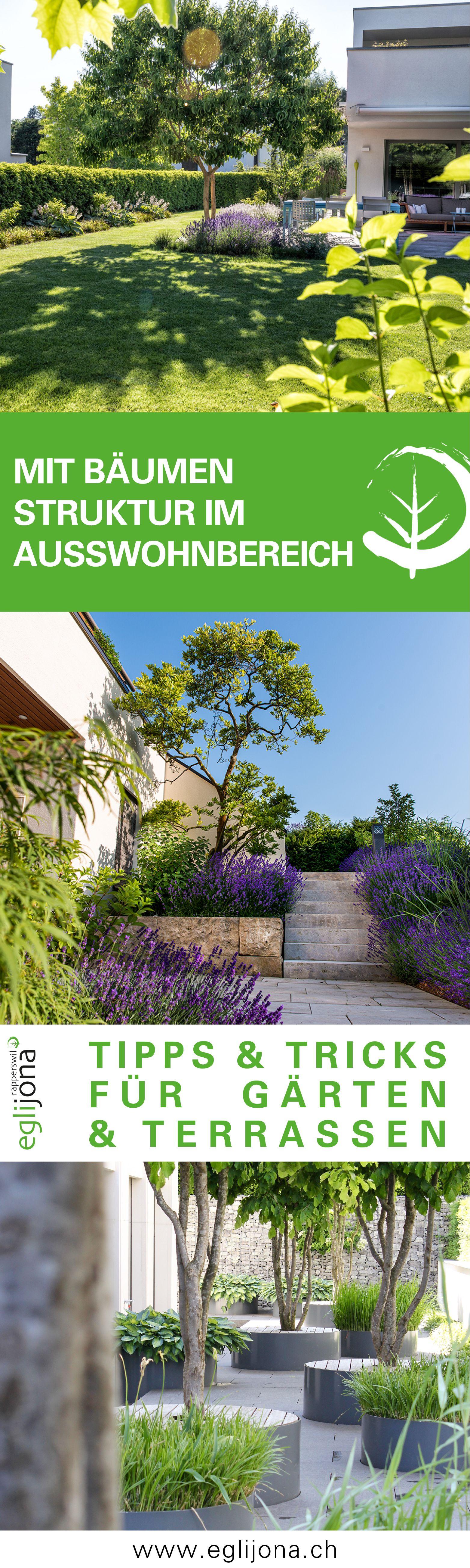 Baume Sorgen Fur Struktur Im Garten Auf Der Terrasse In 2020 Garten Garten Terrasse Blutenfarben