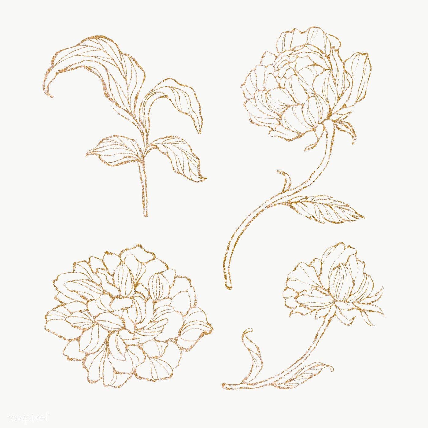 Download Premium Png Of Gold Floral Outline Set Transparent Png 2019766 Gold Drawing Floral Border Design Flower Outline