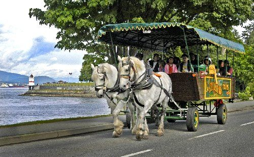 stanley park horse drawn tours - Google Search