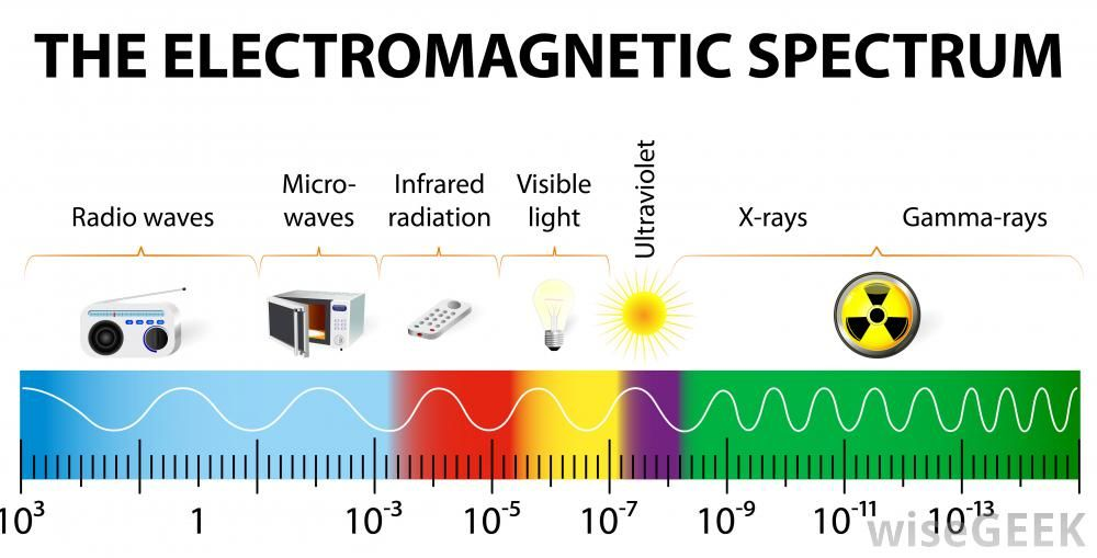 What Electromagnetic Spectrum Is Good For Seeing Plant Life