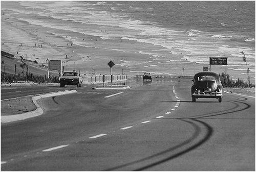 Dennis Stock-The California trip 1968