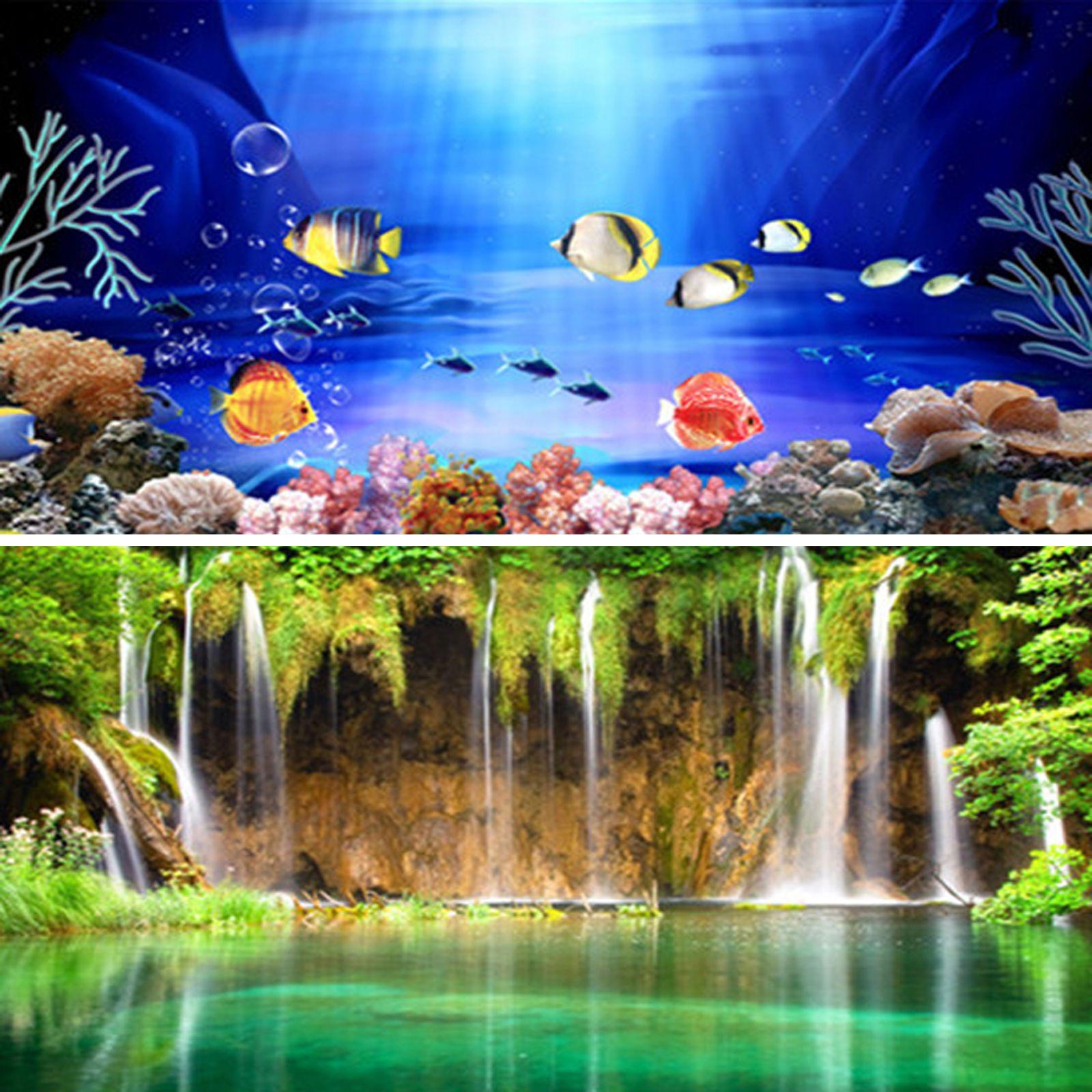 Aquarium Backdrop 2 Pics