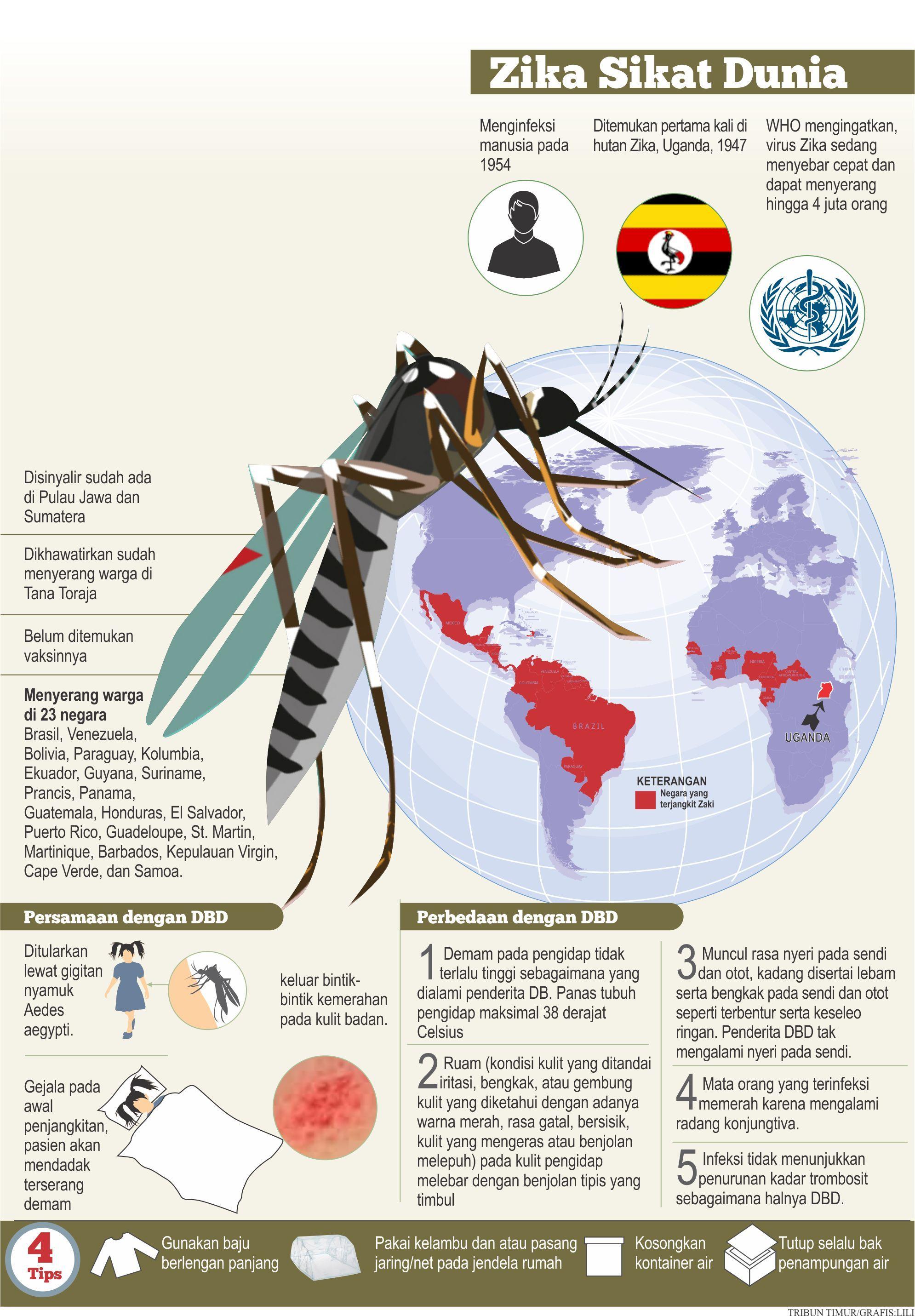 Wabah virus zika melanda dunia infograpis pinterest wabah virus zika melanda dunia ccuart Image collections