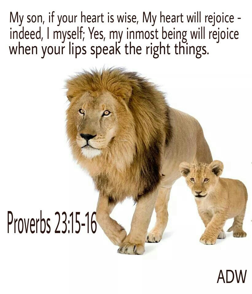 Bible Quotes And Inspirational Quotes