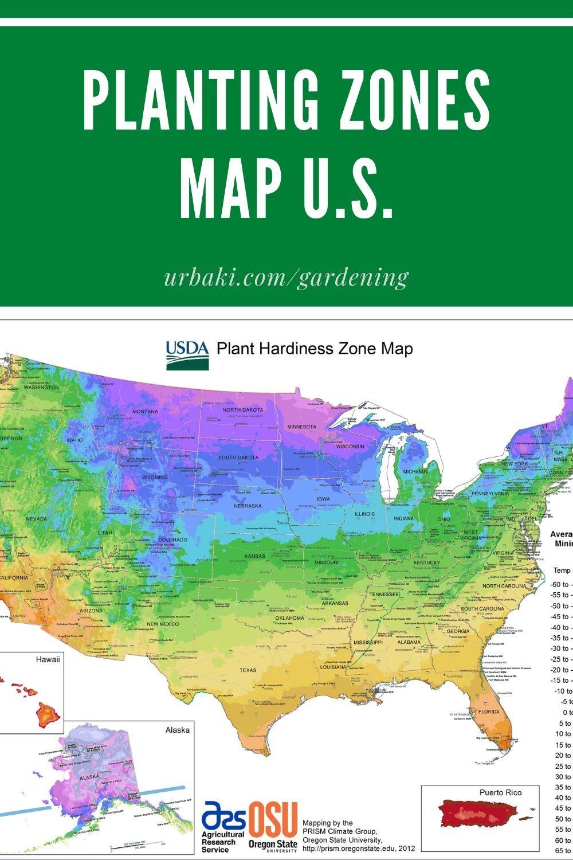16b0172f3cfe59abf3430664c021a952 - Map Of Gardening Zones North America