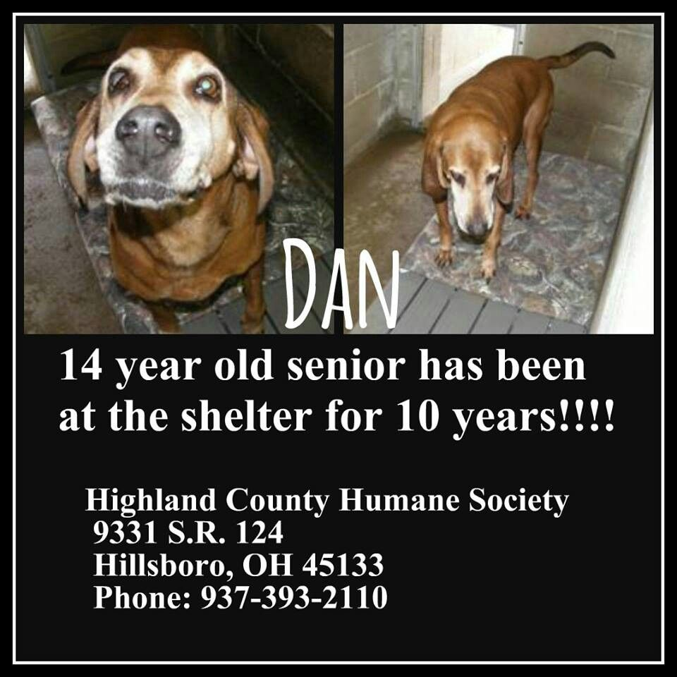 Highland County, Hillsboro, Ohio...had adopter, but she