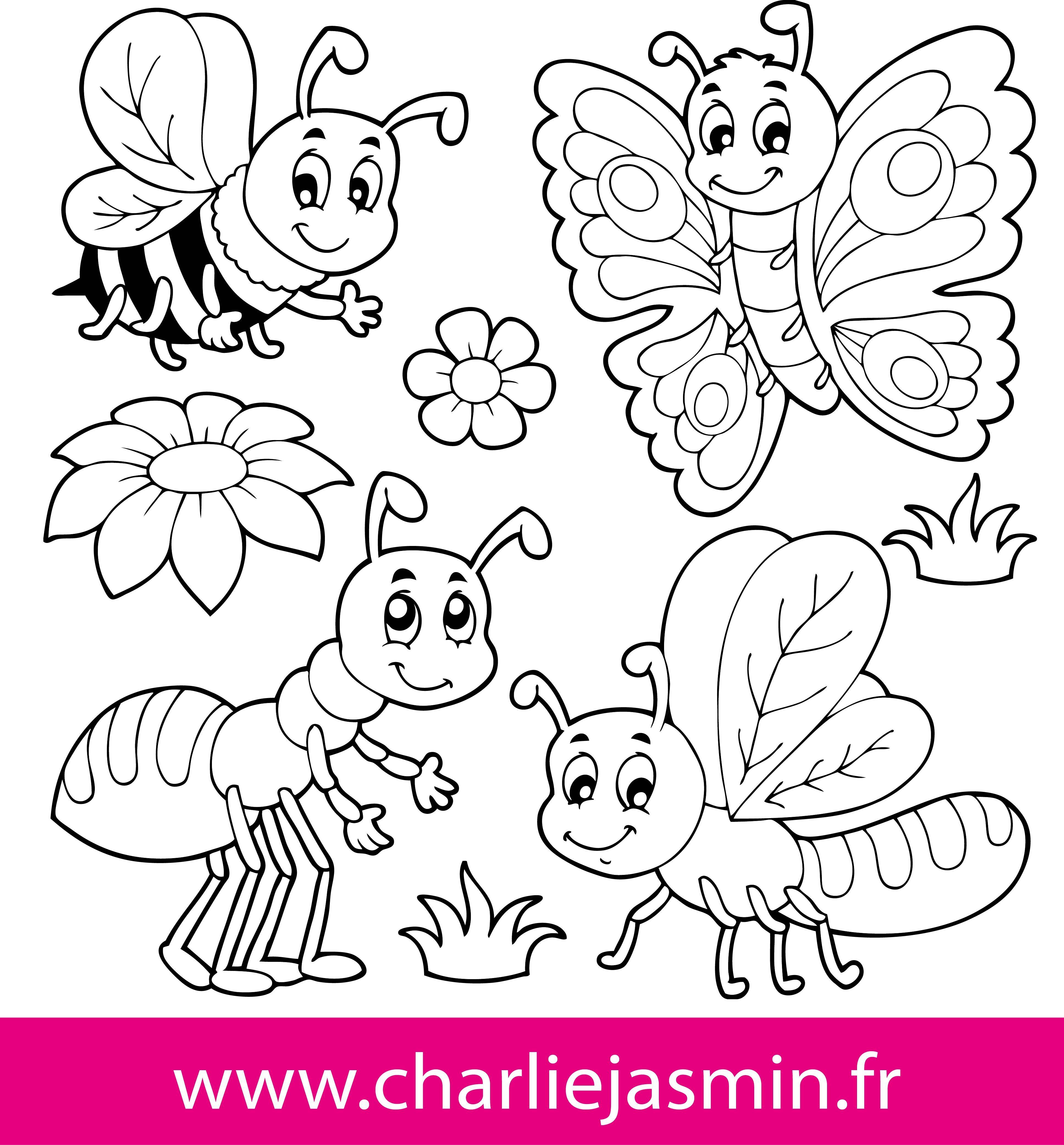 Coloriage Insecte à colorier - Dessin à imprimer | deco creche ...
