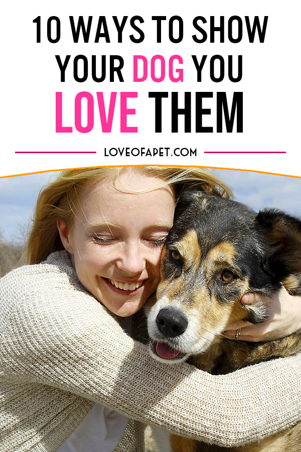 How To Show Your Dog You Love Them 10 Way Love Of A Pet Your Dog Dog Care Tips Dog Care