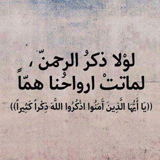 لولا ذكر الرحمن لماتت قلوبنا هما Quran Quotes Love Islamic Quotes Quran Quotes