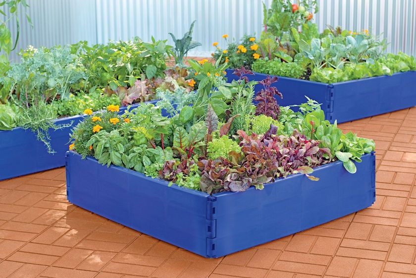 Plastic Raised Garden Beds Periwinkle Grow Bed Raised Beds