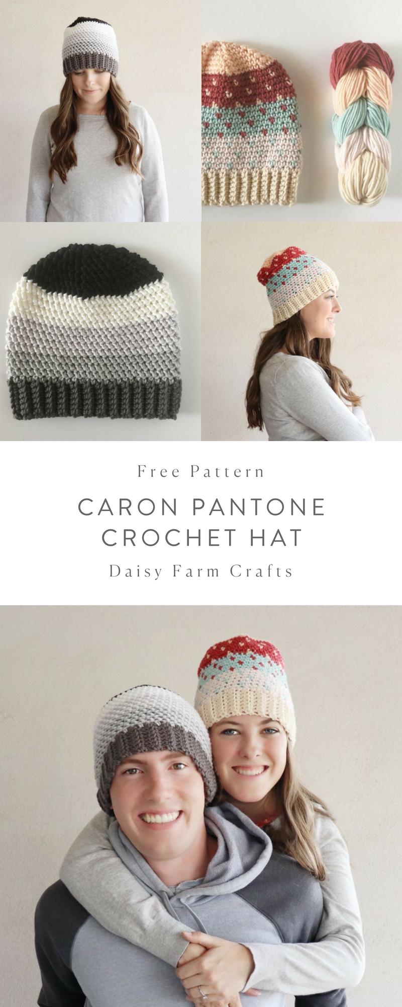 Free Pattern - Caron Pantone Crochet Hat | varios crochet ...