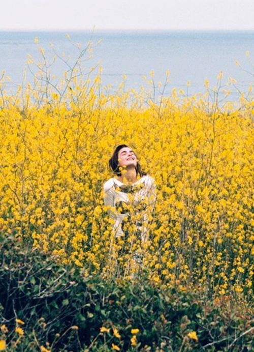 In a yellow field. From land to sea.