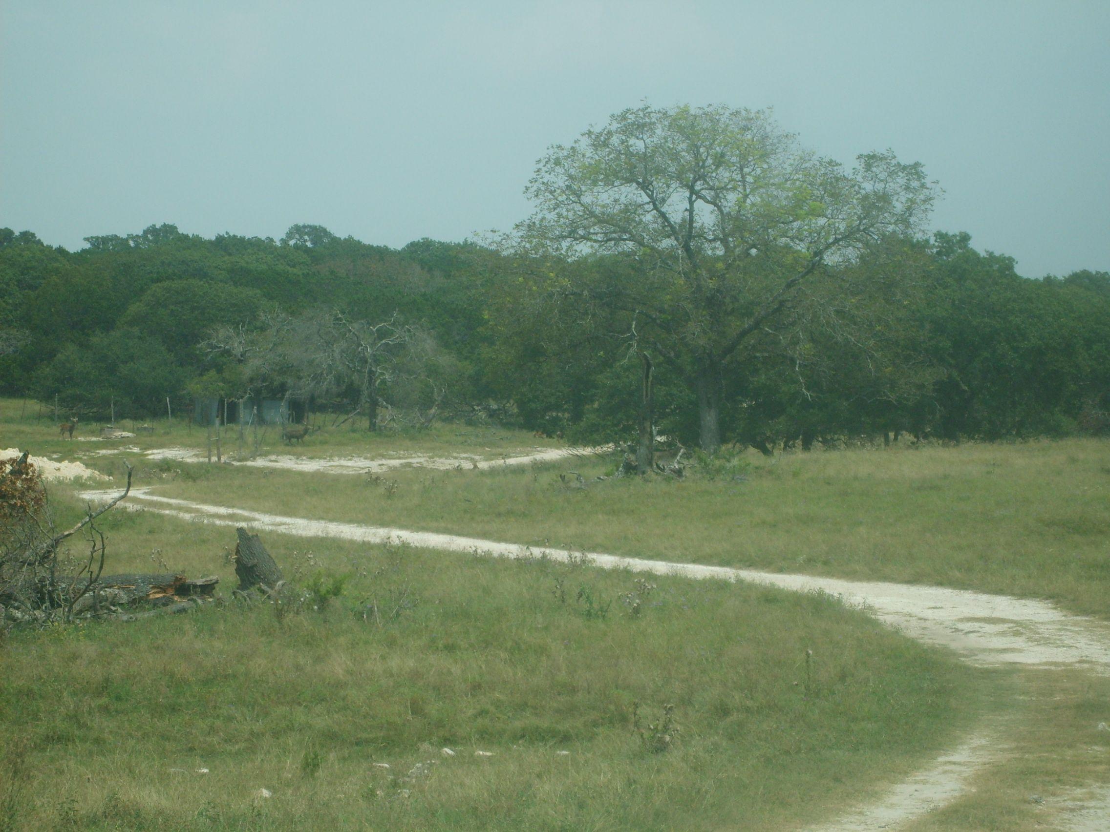 Patio Ranch, Hunt, TX