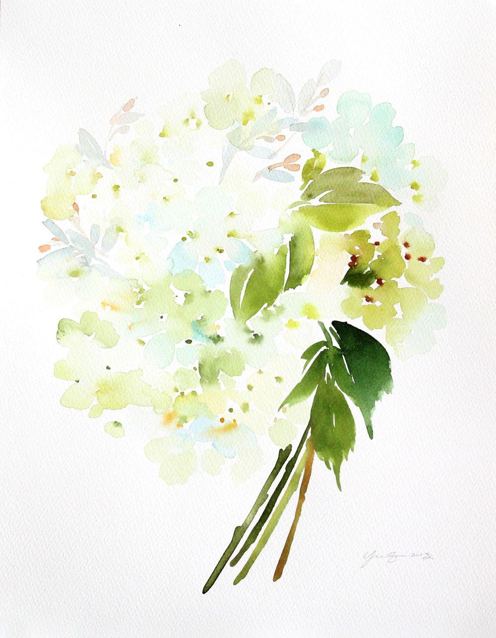 Hydrangeas In White Akwarele Kolorowanki Grafika
