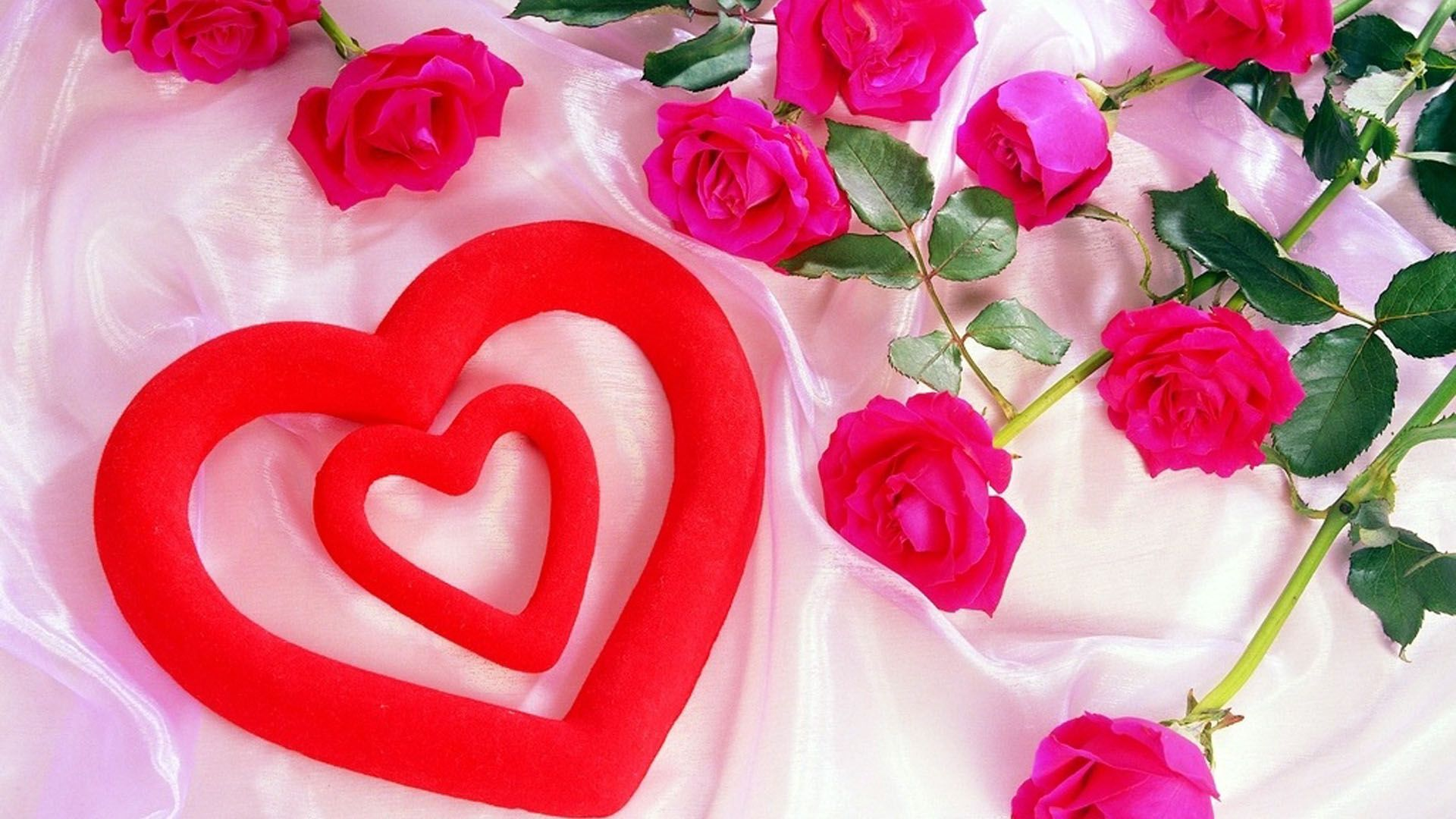 Pink Queen Deptford Annes Lace Spring Flower Desktop Wallpaper