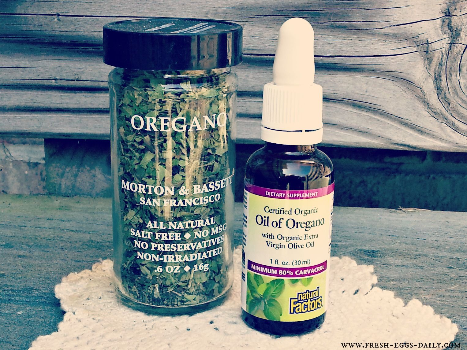 fresh eggs daily oregano as a natural antibiotic for your