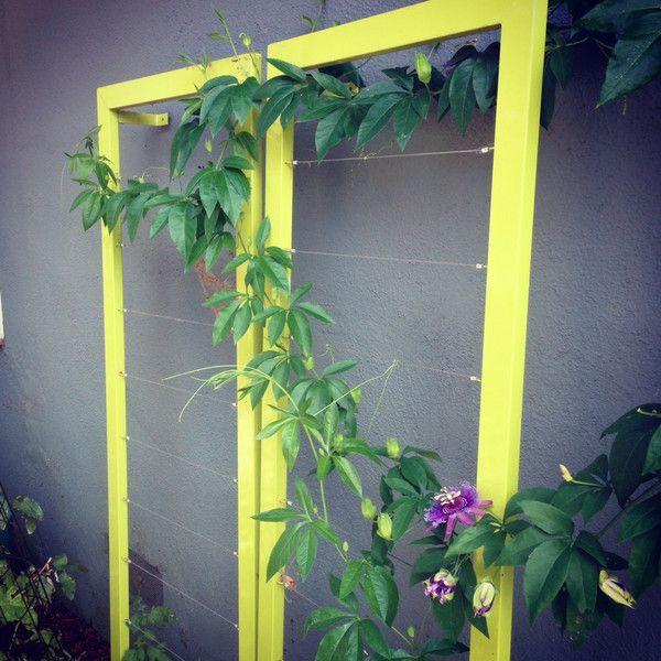 Terra Trellis Blog Wall Trellis Flower Trellis Trellis Plants