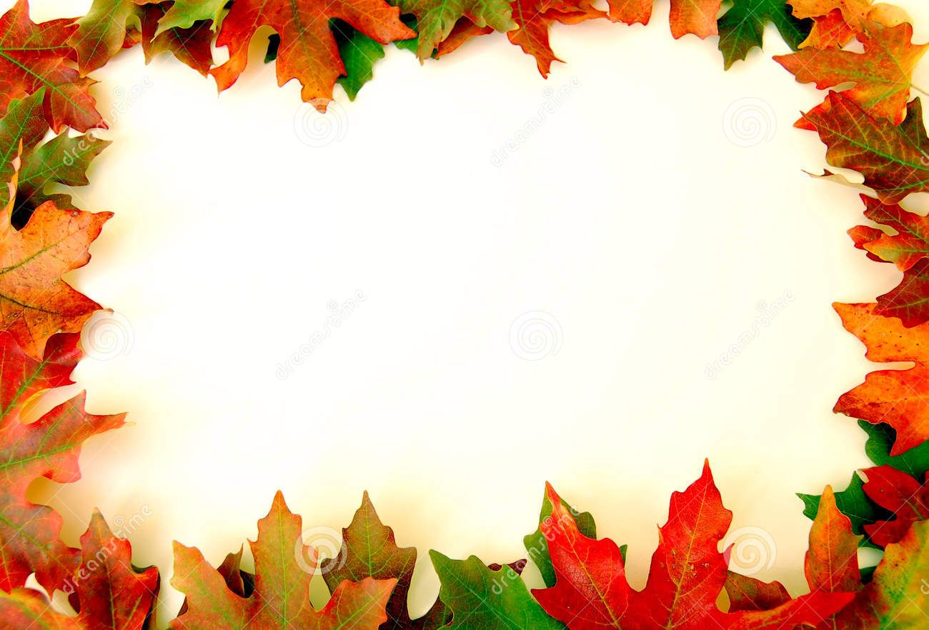 Fall Leaves Border On White Fall Leaf Template Fall Clip Art Fall Clip Art Free