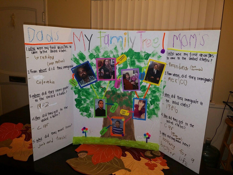 school project family tree family