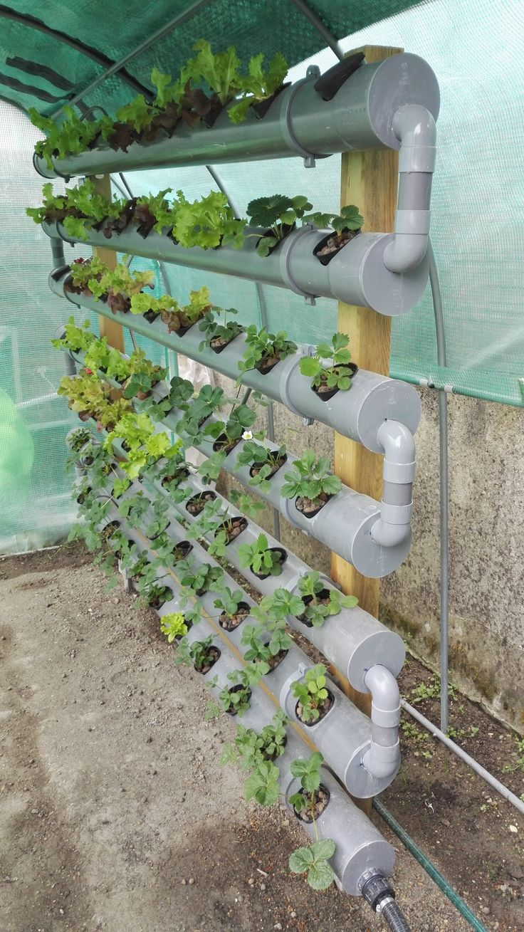 Hydroponic system nft, seen from the set. Hydroponic system nft, seen from the set.