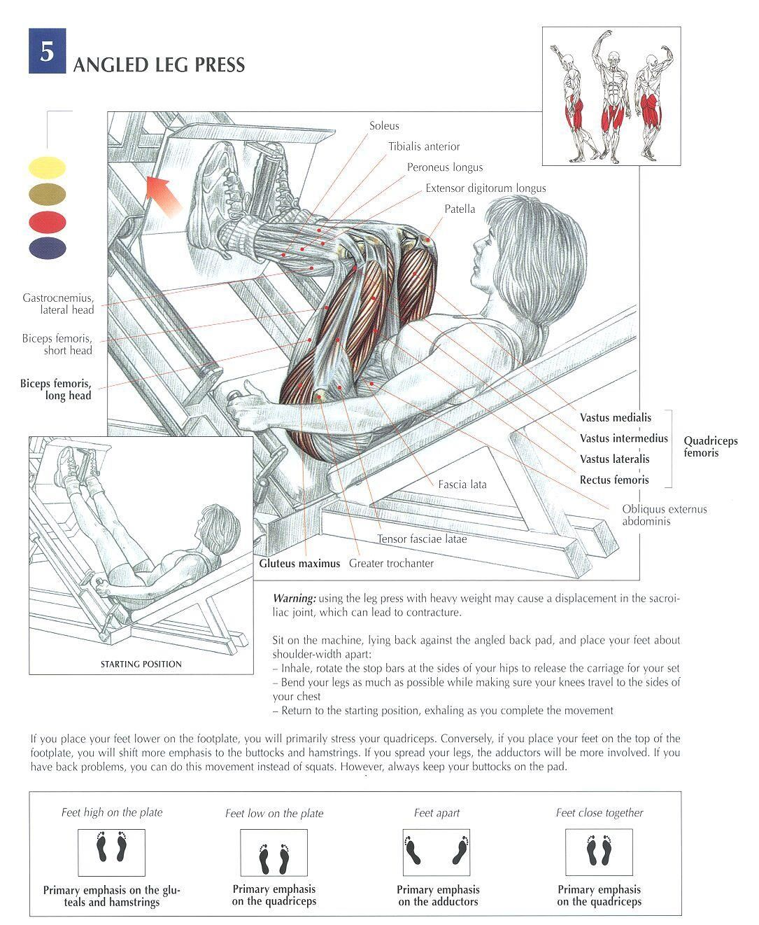Angled Leg Press Health Fitness Exercises Diagrams
