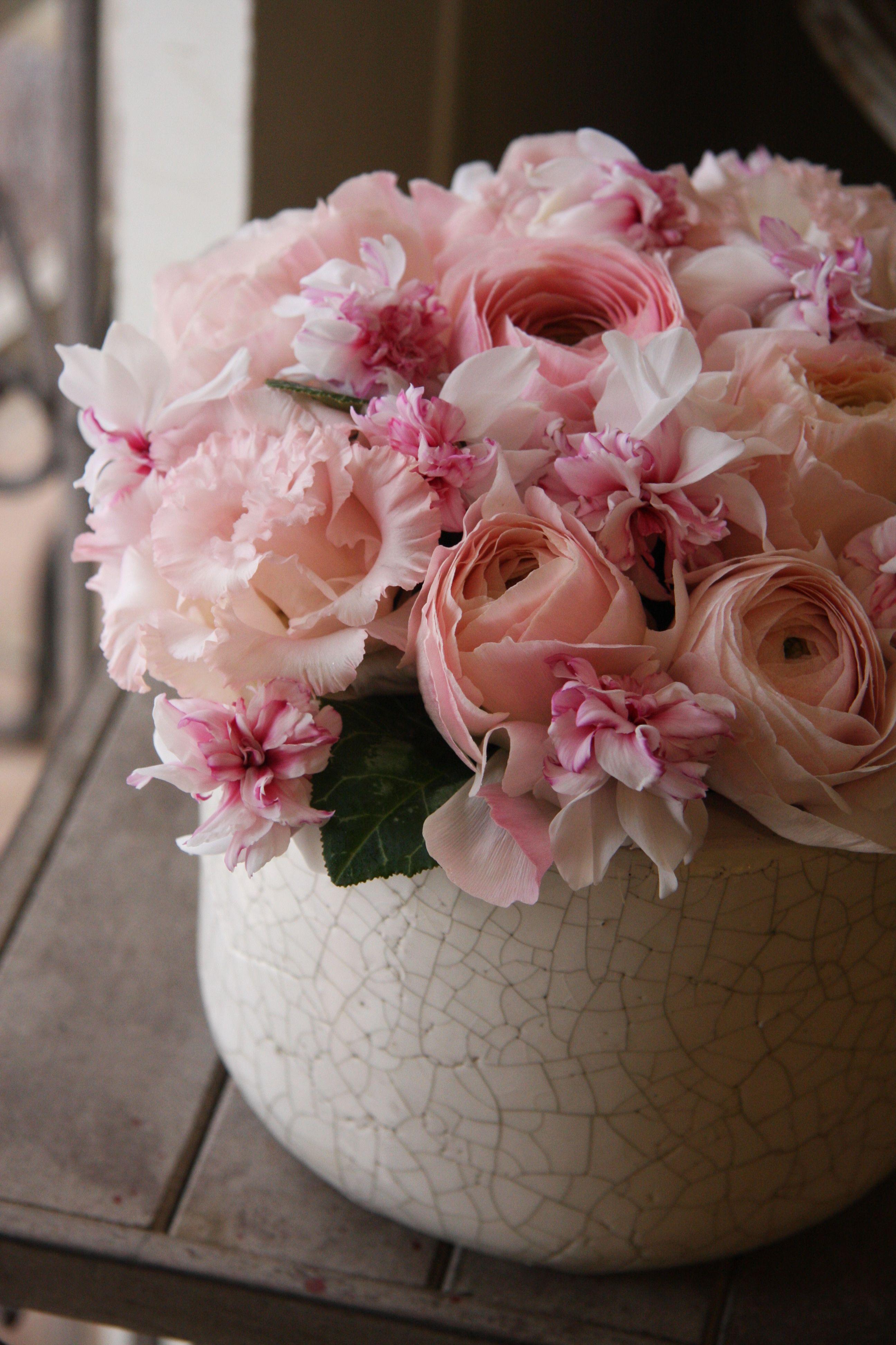 Cyclamen and ranunculus Maison des fleurs, Deco fleur
