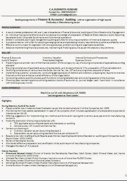 download resume examples Sample Template Example ofExcellent - finance resume format