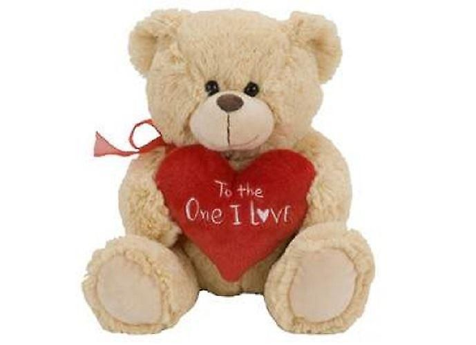 Everyone loves a teddy bear - https://www.fruugo.co.uk/sitting-snuggy-bear-23cm-with-red-heart-to-the-one-i-love/p-4291582