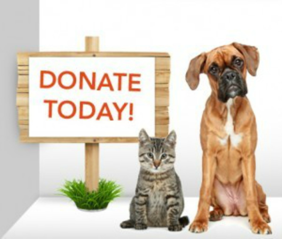 Don't to donate to our Silver Sands Pet Food Bank