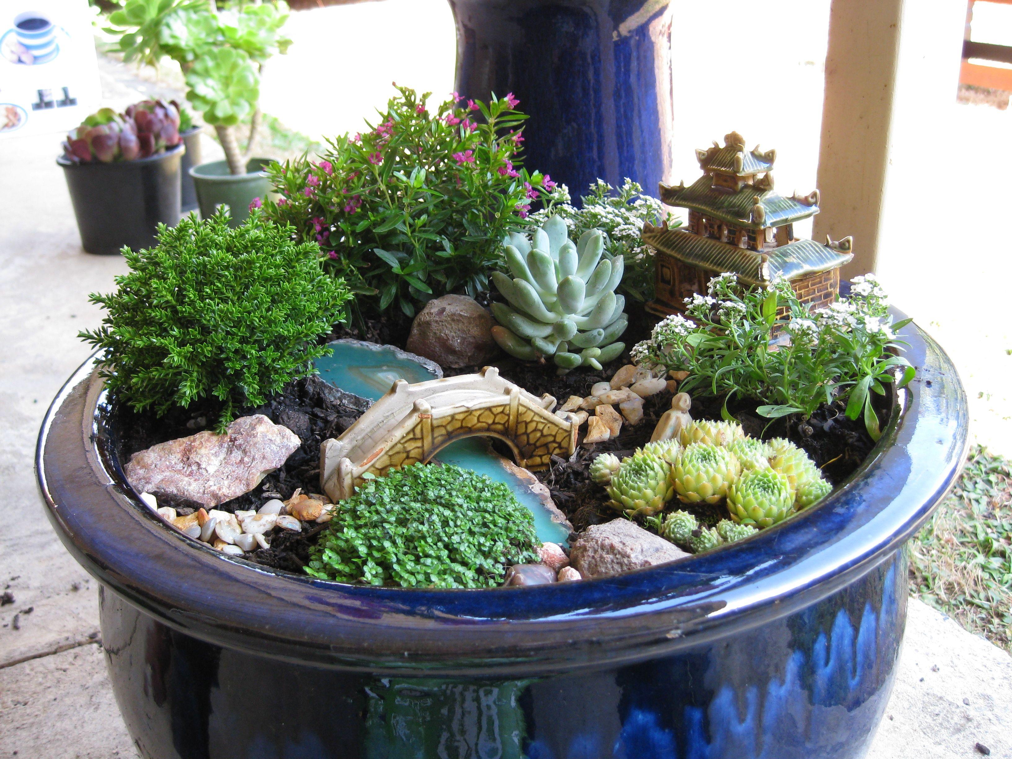 Fairy Garden Or Gnome Garden Idea From A Broken Terra Cotta Pot With Succulents Perfect For Any Small Japanese Garden Miniature Zen Garden Fairy Garden Plants